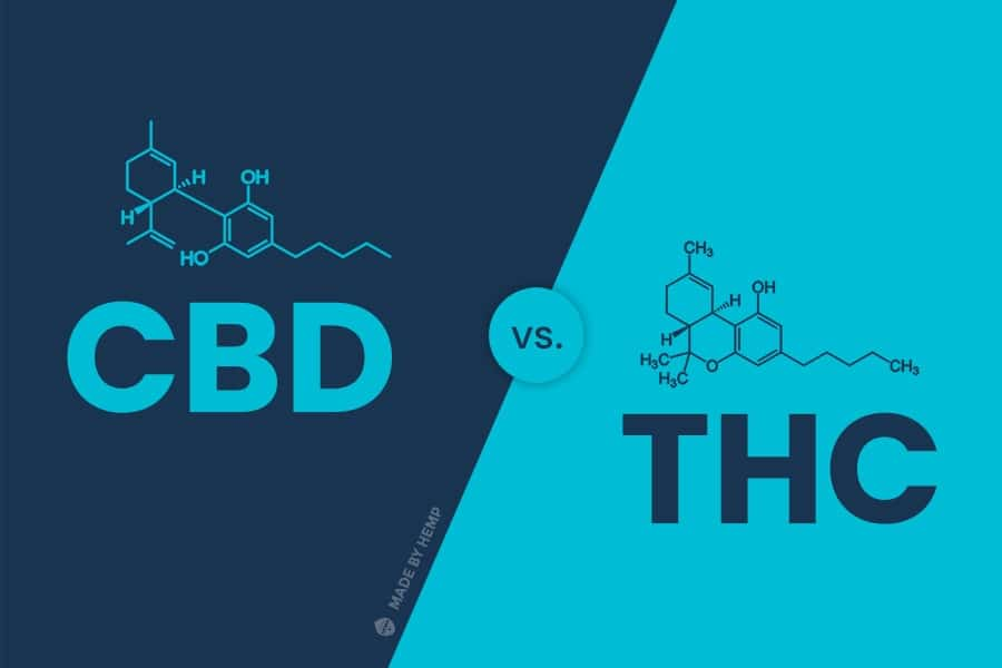 cbd vs thc compound